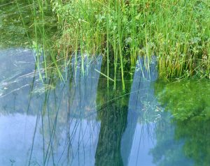 Aguas Silenciosas